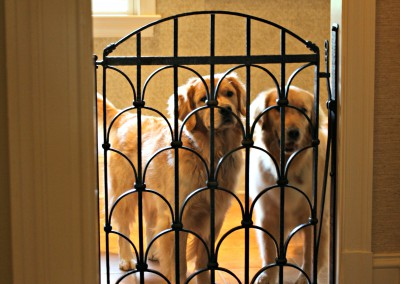 Metal Dog Gate