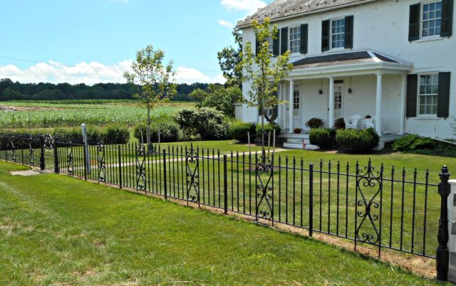 Fence for Yard